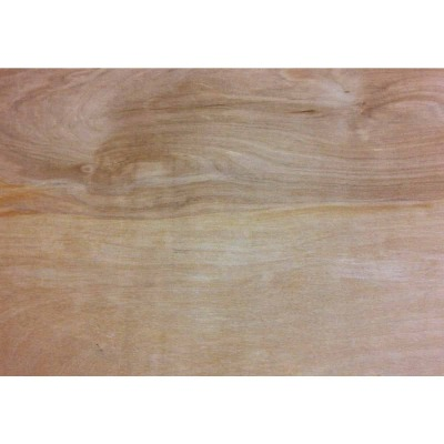 Universal Forest Products 1/2 In. x 24 In. x 24 In. Birch Plywood Panel