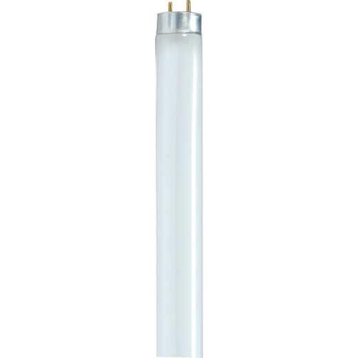 Satco 32W 47.8 In. Warm White T8 Medium Bi-Pin Fluorescent Tube Light Bulb