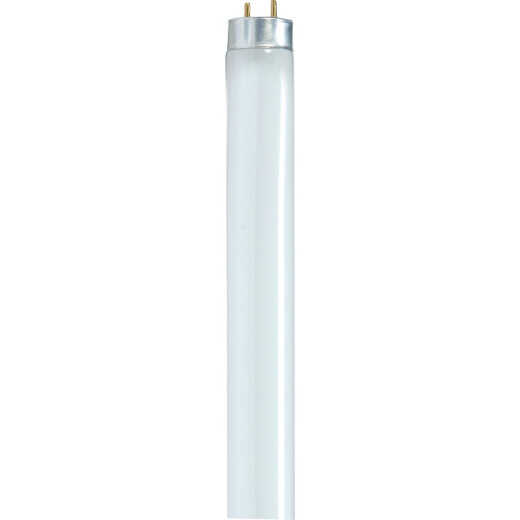 Satco 32W 47.8 In. Cool White T8 Medium Bi-Pin Fluorescent Tube Light Bulb