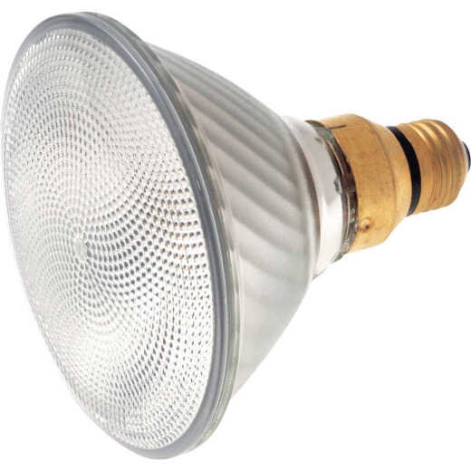 Satco 75W Equivalent Clear Medium Skirted Base PAR38 Halogen Floodlight Light Bulb