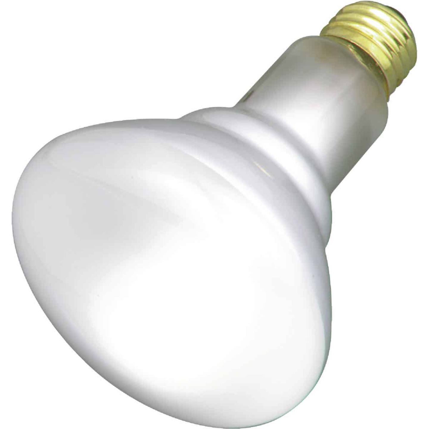 Satco 65W Frosted Medium Base BR30 Reflector Incandescent Floodlight Light Bulb (2-Pack) Image 1