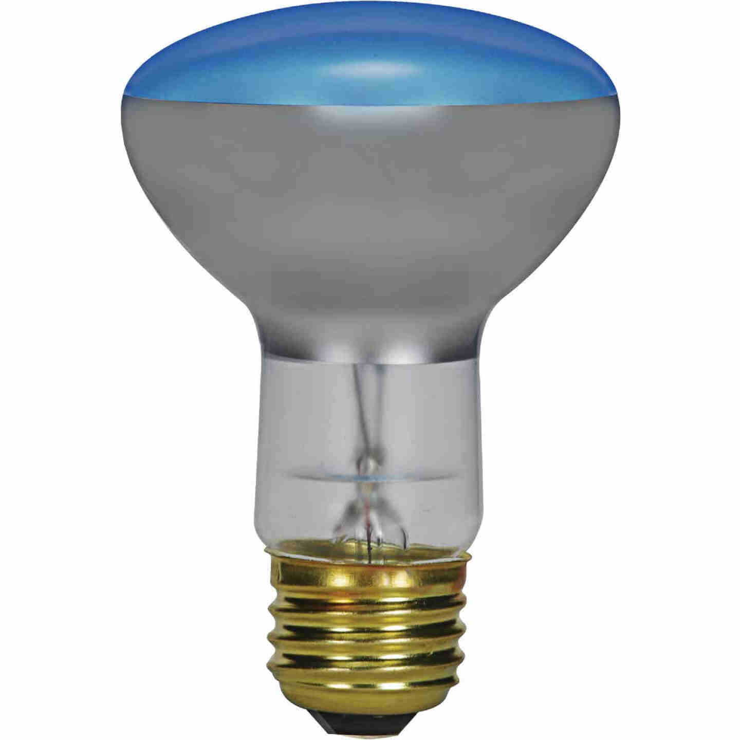 Satco 75W Frosted Medium Base R25 Incandescent Plant Light Bulb Image 1